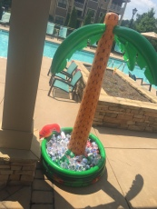 Ansley Falls Pool Party july2015 004