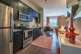 1 Bedroom Model Kitchen