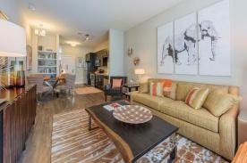 1 Bedroom Model Living Space